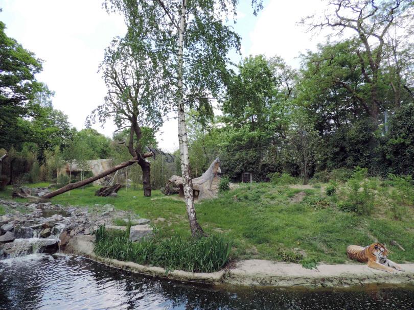 Duisburg zoo strich